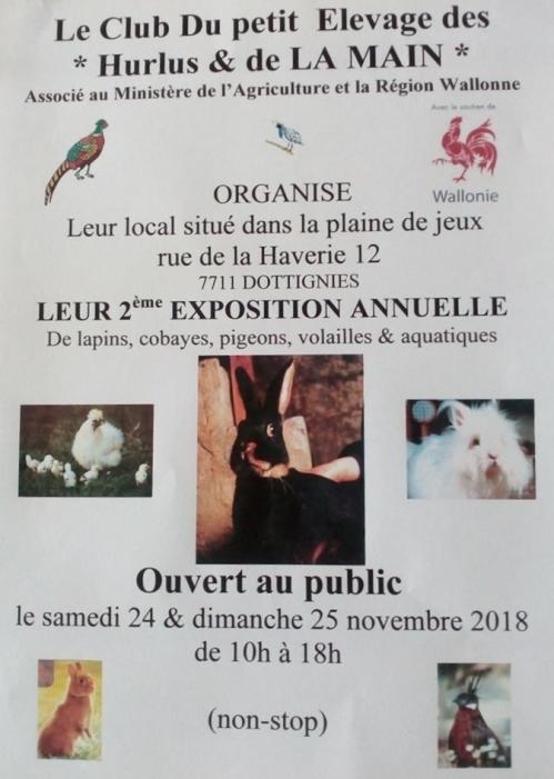 Expo petit elevage 2019
